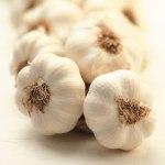 Garlic/만을/Maneul