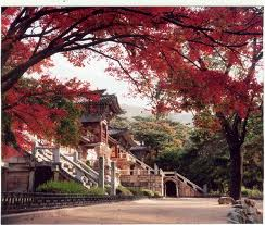 Bulgok sa in fall