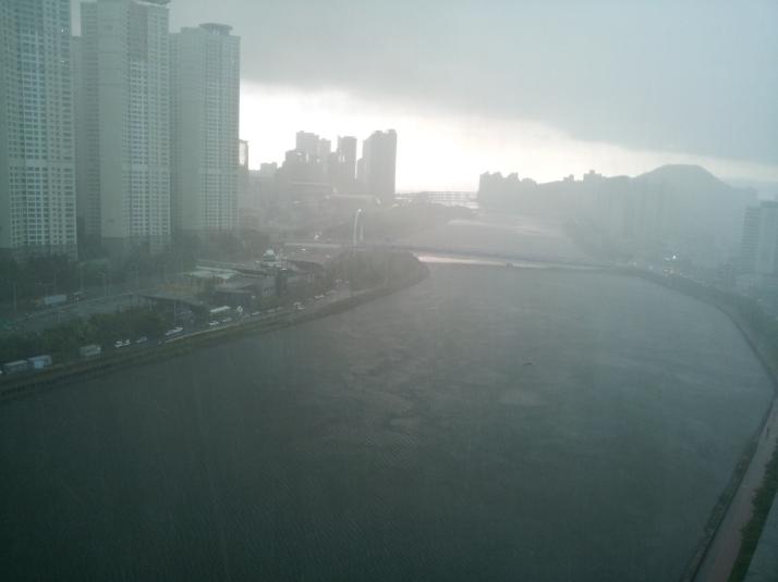 rain pics (2)