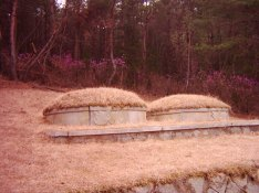 tombs on the mountain