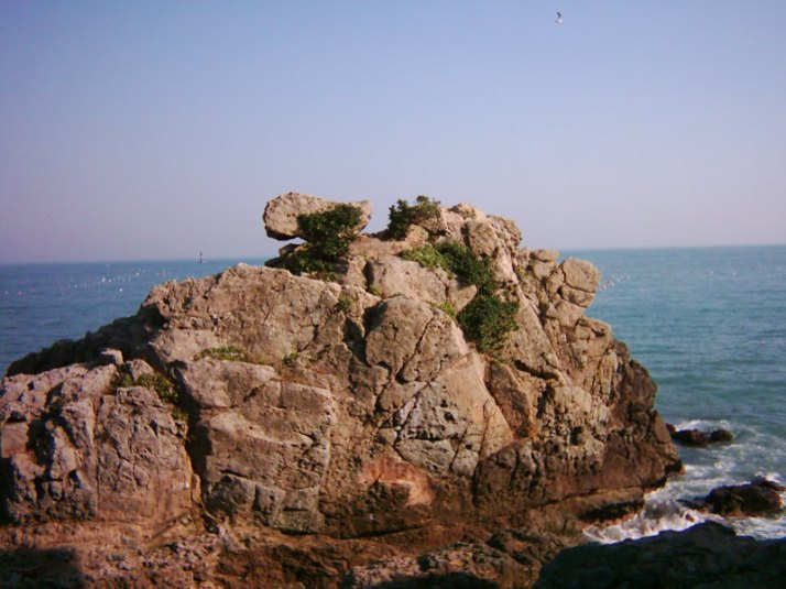 typical rocks on the shoreline
